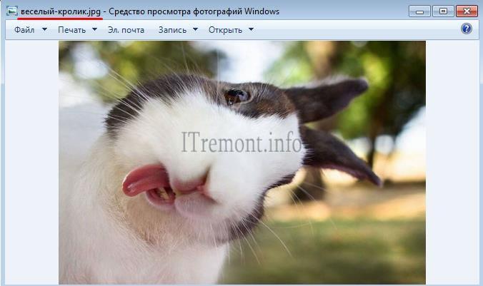 Windows 7 Krolik Скачать Торрент - фото 10